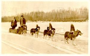 Canada - Alberta, McMurray. Sled Dog Team - RPPC