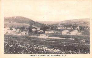 Meridale Farms New York Postcard