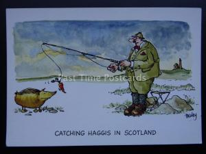 Comic Scottish Fishing Theme CATCHING HAGGIS IN SCOTLAND Postcard by J.Dixon