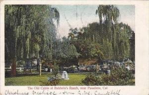 California Pasadena The Old Cabin At Baldwins Ranch 1905