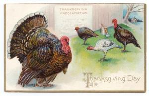 Turkeys Proclamation Embossed Vintage Tuck Series 123 Thanksgiving Postcard