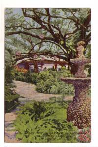 Fountain, Winding Paths, Sunken Gardens, St Petersburg, Florida, Sun News Co
