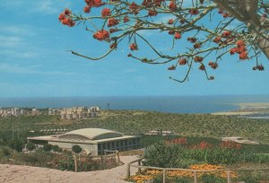 Haifa Winston Churchill Institute Israel Postcard