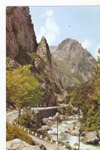 Postal 045664 : Picos de Europa. Carretera Unquera Potes. Desfiladero de la H...