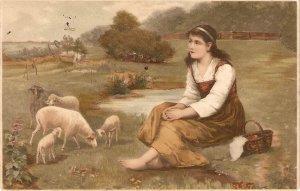 Shepherdess. Sheeps pasturing Nice old vintage German postcard