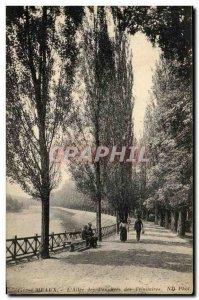 Old Postcard Meaux L & # 39Allee Poplars Trinitarian