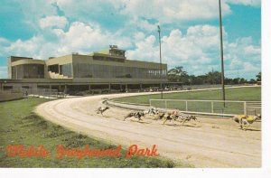 Alabama Theodore Mobile Greyhound Park sk7184