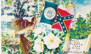 GEORGIA STATE FLOWER, TREE, AND BIRD- Cherokee Rose, Live Oak, Brown Thrasher...