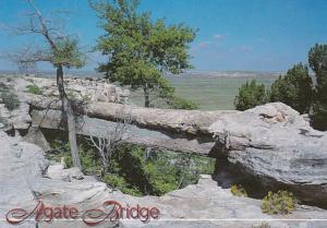 Arizona Petrified Forest National Park Agate Bridge