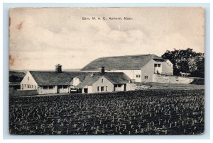 1911 Barn  M. A. C. Amherst MA Postcard Excelsior Germany
