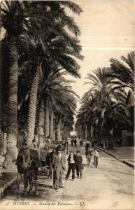 CPA Hyeres - Avenue des Palmiers (634960)