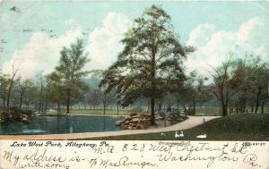 Allegheny Pennsylvania~Lake West Park Path~Swans~1910 Postcard
