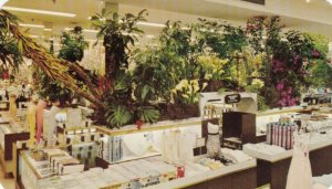 ALLENTOWN, Pennsylvania, 40-60s; Hess's Department Store, Annual Flower Show