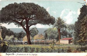 Spain Old Vintage Antique Post Card Alrededroes de la Laguna Tenerife Postal ...