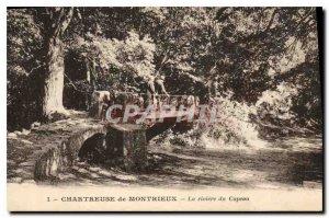 Postcard Old Chartreuse Montrieux La Riviere of Capeau