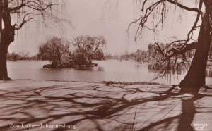 Zoo Lake Johannesburg Old Real Photo South African Postcard