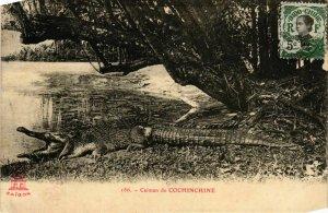 CPA AK INDOCHINA Caiman de Cochinchine VIETNAM (957131)