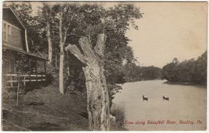 1907-15 Reading PA View Boating along the Schuylkill River Berks Co. DB Postcard