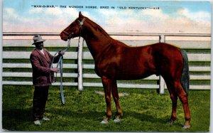 Vintage Kentucky Postcard MAN-O-WAR the Wonder Horse Kropp Linen 1942 Cancel