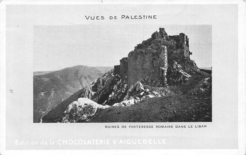 Israel Vues de Palestine Ruines de Forteresse Romaine dans le Liban Postcard