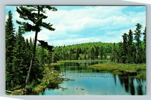 Ontario- Canada, Algonquin Natl Park, Scenic Lake, Chrome Postcard