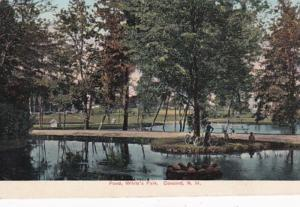 New Hampshire Concord Pond In White's Park 1908