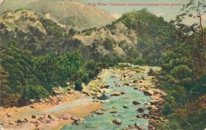 Jamaica Wag Water Castleton Gardens 01.95