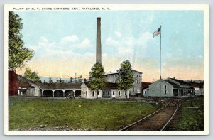Wayland New York~Wayland Canning Co Plant~Railroad Tracks Lead to Factory~1920s