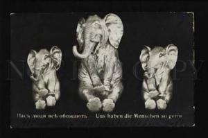 073741 FUNNY Happy ELEPHANT Figures Vintage PHOTO
