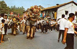 Singapore Lion Dance  Lion Dance