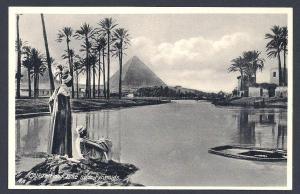 Flood times near the pyramids Cairo Egypt unused c1930's