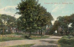 DANBURY , Connecticut, 1910 ; Triangle & White Streets