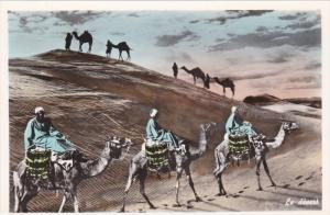 RP: The Desert , Lebanon , 20-40s