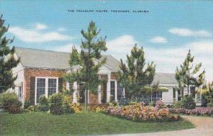 Alabama Theodore The Treasure House
