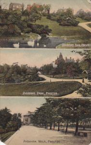 PRESTON (Lancashire), England, UK, 00-10s; 3-Views, Avenham Park, Swans, Aven...
