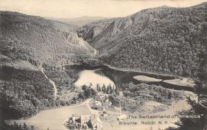 Dixville Notch New Hampshire~Birdseye View Switzerland of America~Homes~1908 B&W