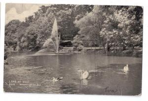 Lake at Zoo Wilmington DE 1908 Postcard