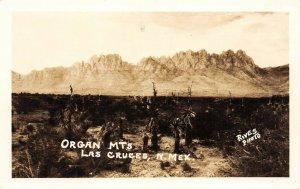 LP15   Las Cruces New Mexico Postcard RPPC Organ Mountains Rives Photo