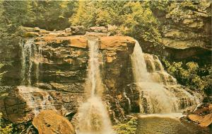 Blackwater Falls Davis West Virginia WV water fall Postcard