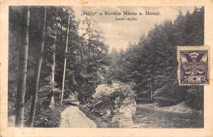 Slovakia Peklo u Noveho Mesta n. Metuji ,Lesni idylla