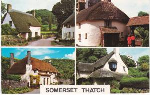 Post Card Somerset Thatch