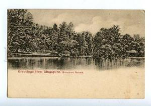 129651 GREETINGS from SINGAPORE Botanicer Garden Vintage PC