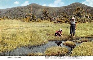 Looking by the Stream Japan Unused