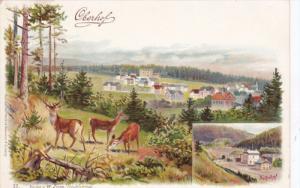 OBERHOF, Thuringia, Germany; Deer inpasture overlooking town, Bahnhof, 00-10s