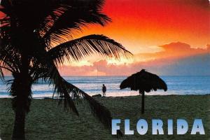 USA Florida Impressions Tropical Florida Sunset