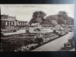 Oxfordshire BLENHEIM PALACE The French Gardens c1912 RP by Valentine's 73322