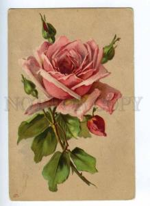 189422 Pink ROSES w/ Dew by C. KLEIN Vintage LITHO PC
