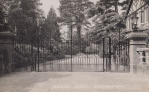 Jubilee Gates Sandringham Norfolk Vintage Real Photo Postcard