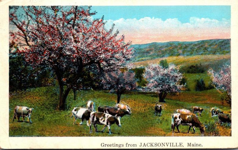 Maine Greetings From Jacksonville 1931