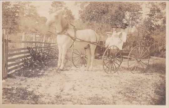 Horses Couple In Horse Drawn Carriage Real Photo
